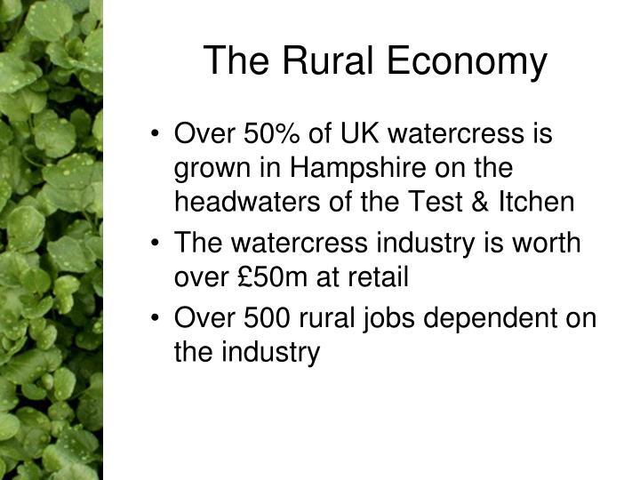 The Rural Economy