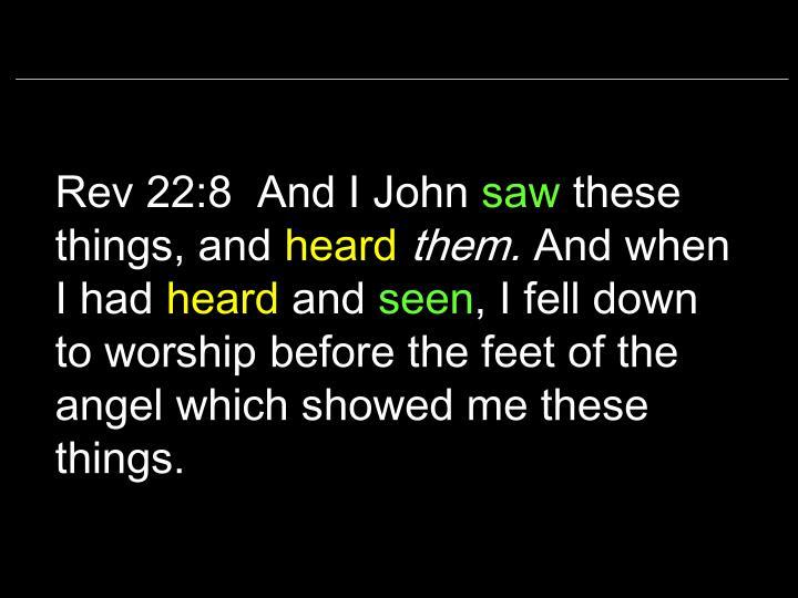 Rev 22:8  And I John