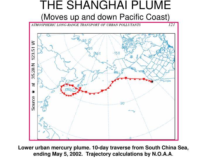 THE SHANGHAI PLUME