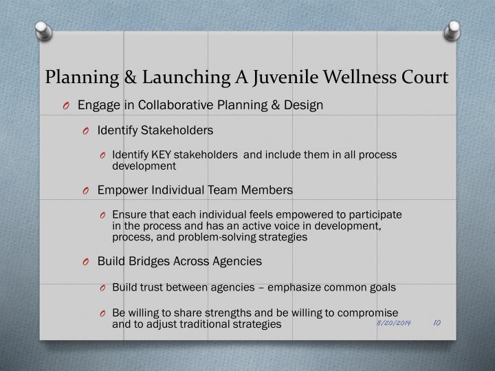 Planning & Launching A Juvenile Wellness Court