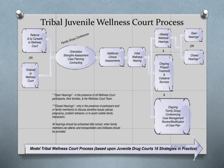 Tribal Juvenile Wellness Court Process