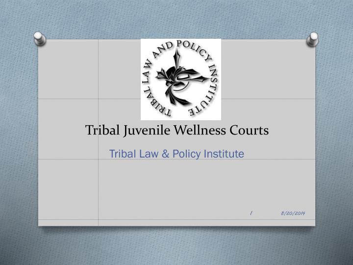 tribal juvenile wellness courts
