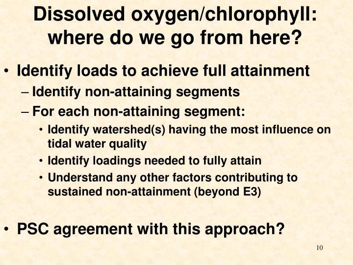 Dissolved oxygen/chlorophyll: