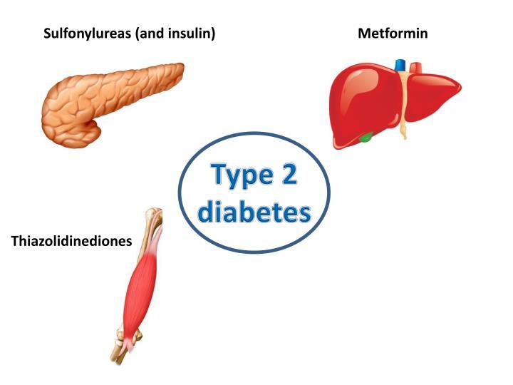 Sulfonylureas (and insulin)