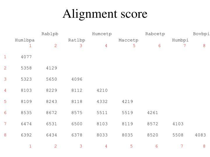 Alignment score