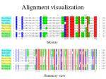 alignment visualization