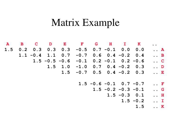 Matrix Example