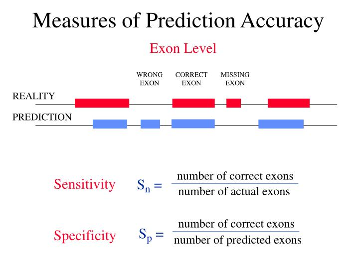 number of correct exons