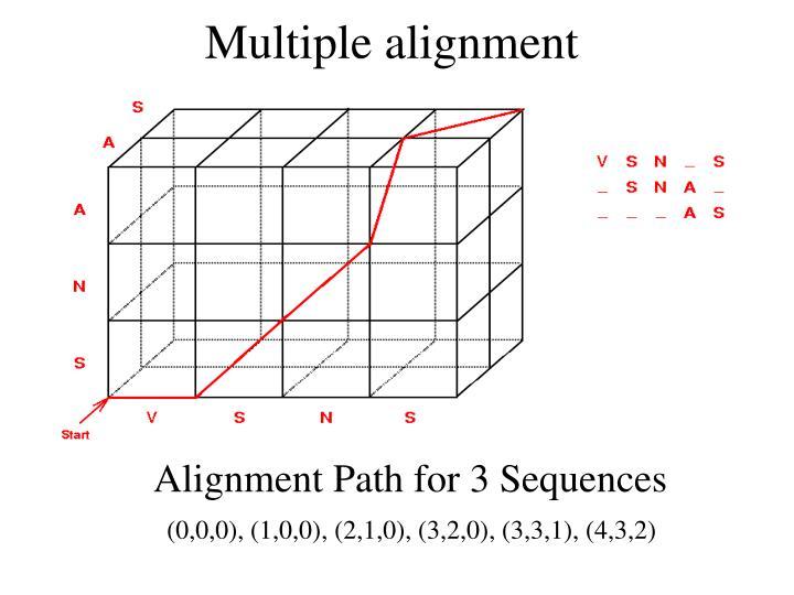 Multiple alignment