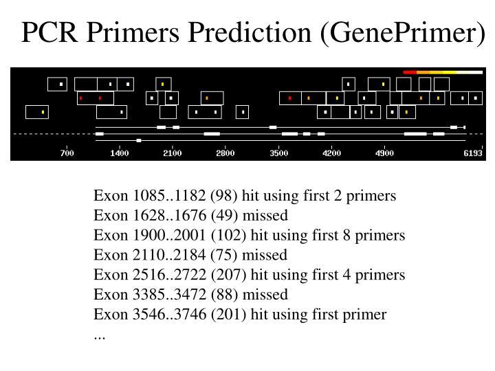PCR Primers Prediction (GenePrimer)