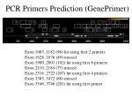 pcr primers prediction geneprimer