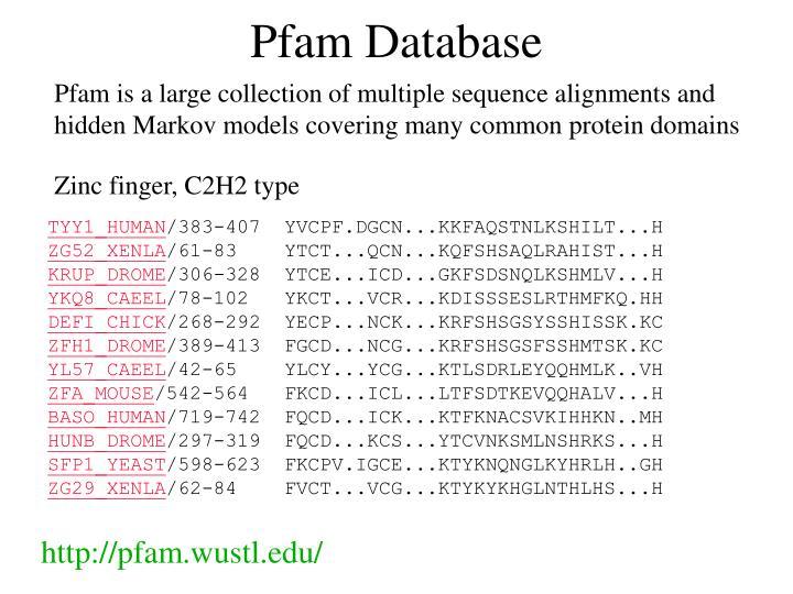 Pfam Database