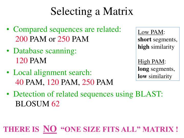 Selecting a Matrix