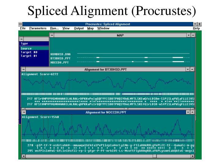 Spliced Alignment (Procrustes)