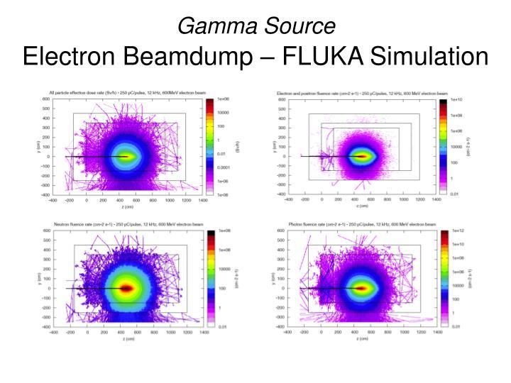 Gamma Source