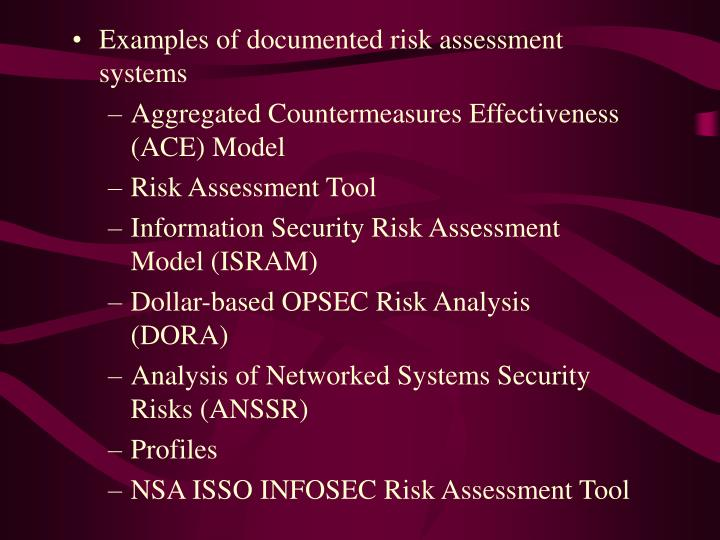 Examples of documented risk assessment systems