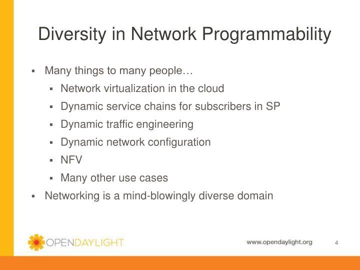 Diversity in Network Programmability