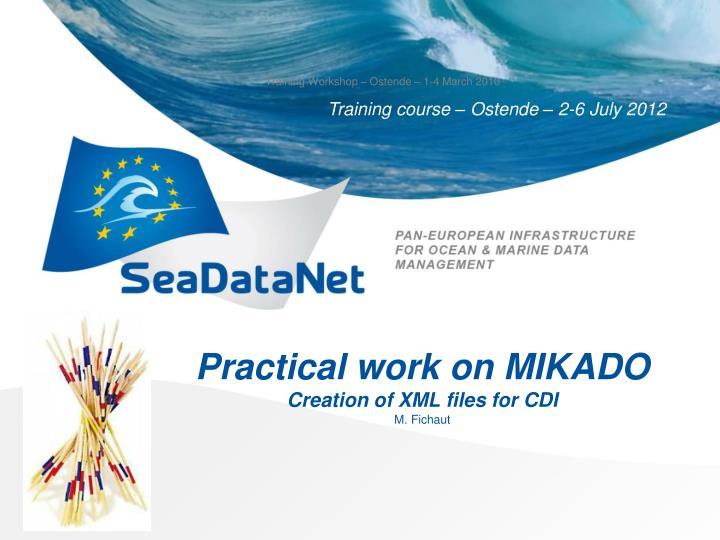 Practical work on MIKADO