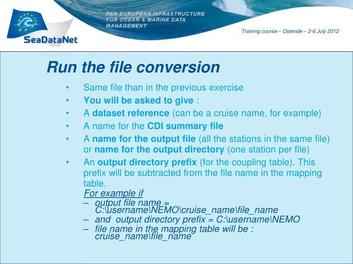 Run the file conversion