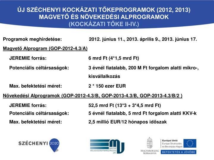 ÚJ SZÉCHENYI KOCKÁZATI TŐKEPROGRAMOK (2012, 2013)