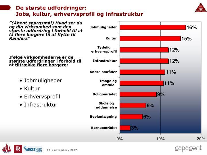 De største udfordringer:                                                              Jobs, kultur, erhvervsprofil og infrastruktur
