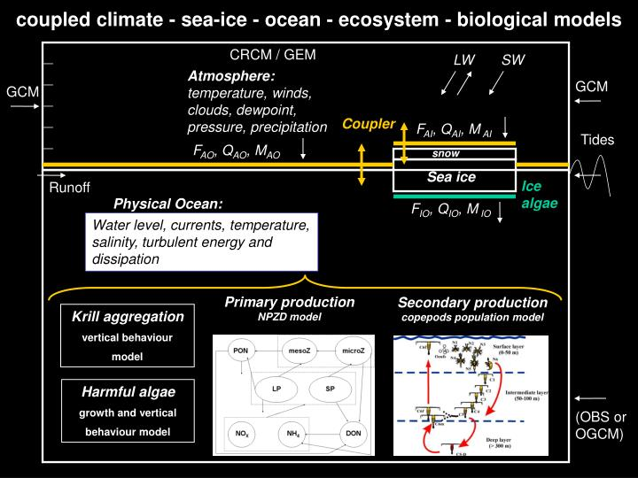 coupled climate - sea-ice - ocean - ecosystem - biological models