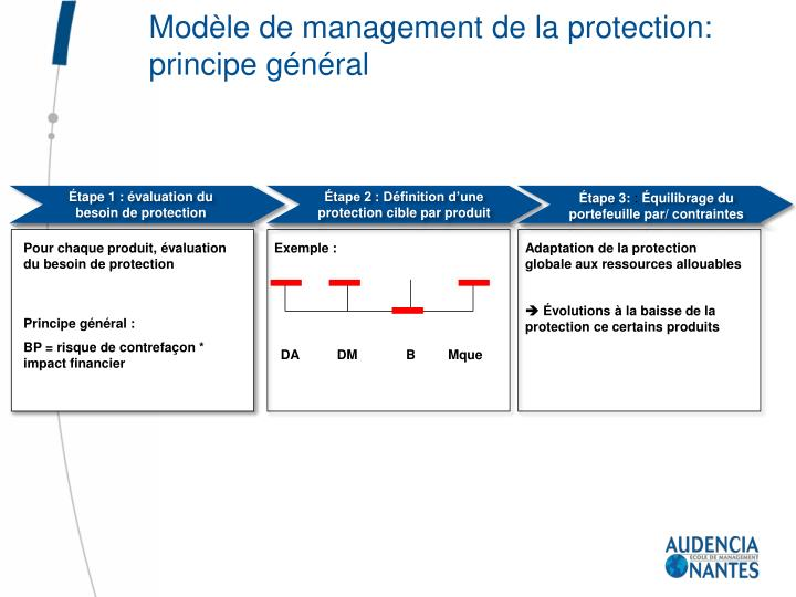Modèle de management de la protection: principe général