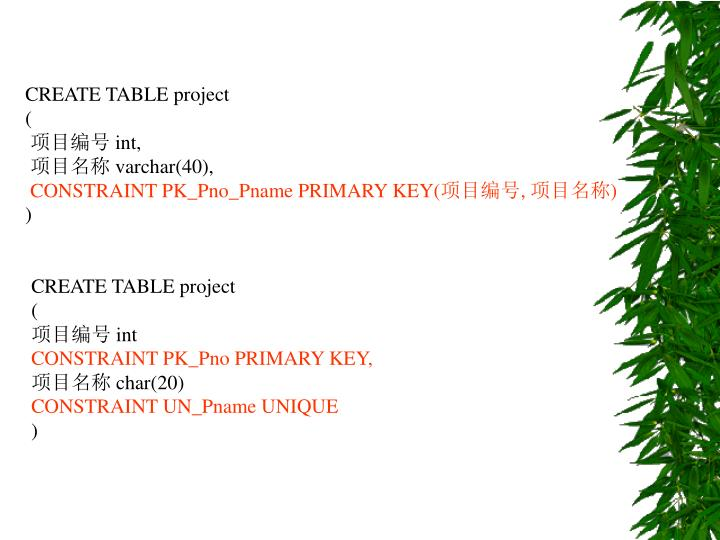 CREATE TABLE project