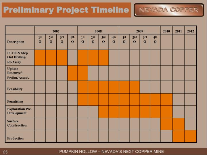Preliminary Project Timeline