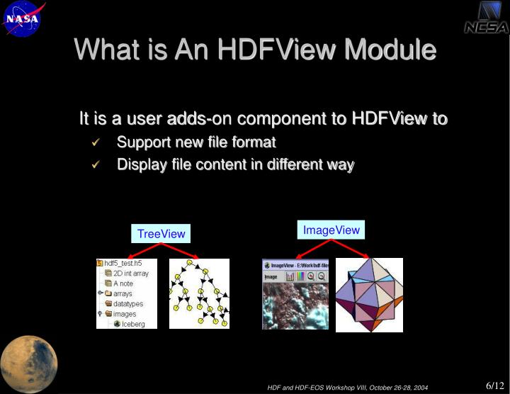 What is An HDFView Module
