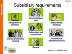 subsidiary requirements