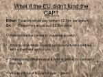what if the eu didn t fund the cap