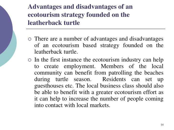 Advantages and disadvantages of an ecotourism strategy founded on the leatherback turtle