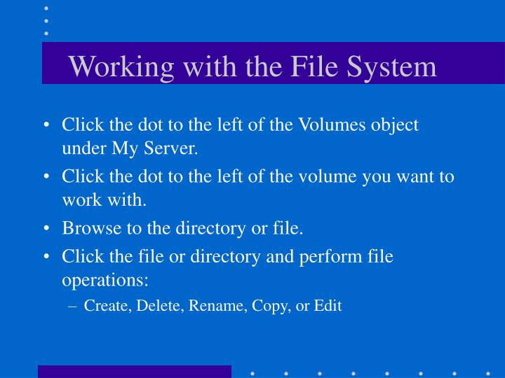 Working with the File System