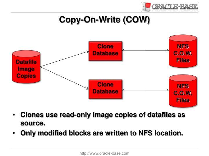 Copy-On-Write (COW)