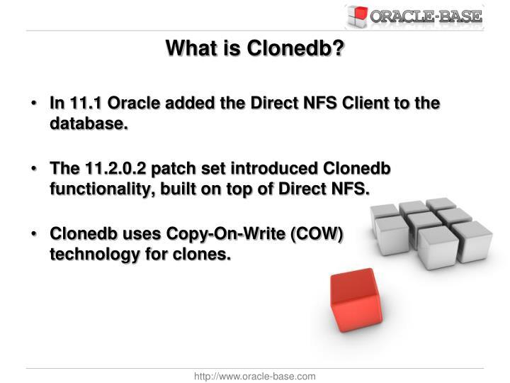 What is Clonedb?