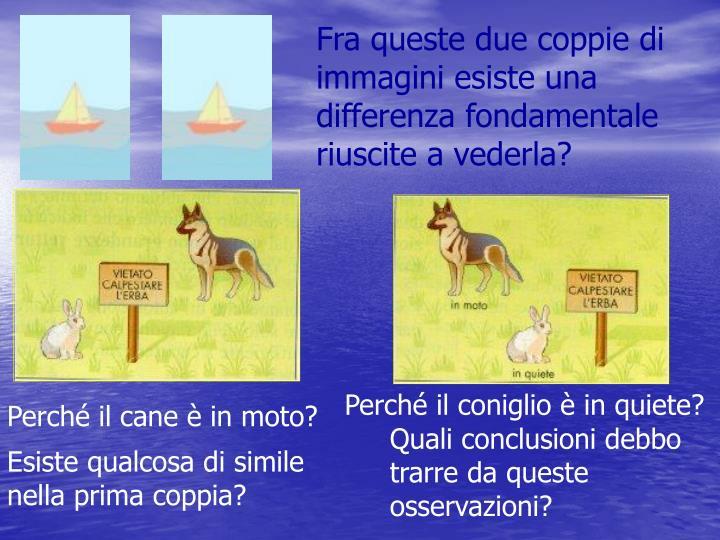 Fra queste due coppie di immagini esiste una differenza fondamentale riuscite a vederla?