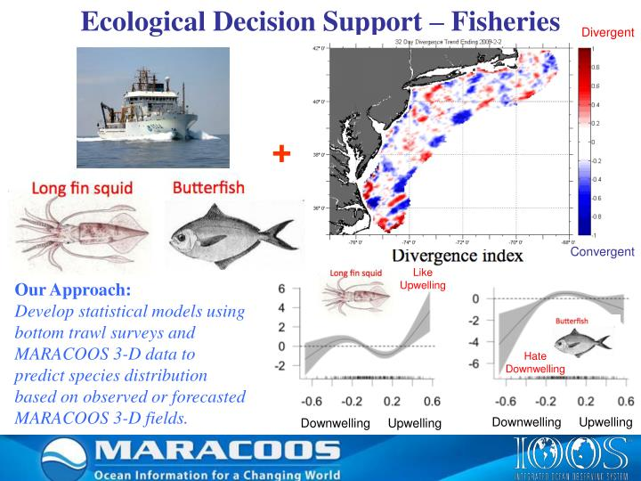 Ecological Decision Support – Fisheries