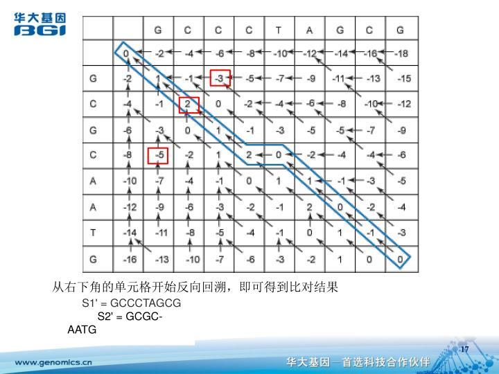 从右下角的单元格开始反向回溯,即可得到比对结果