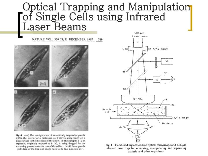 Optical Trapping and Manipulation of Single Cells using Infrared