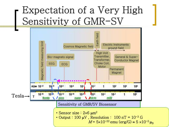 Expectation of a Very High Sensitivity of GMR-SV