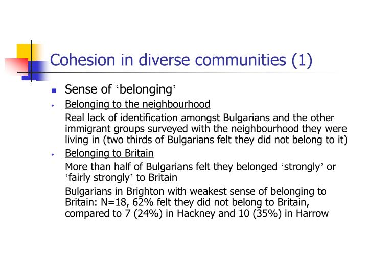 Cohesion in diverse communities (1)
