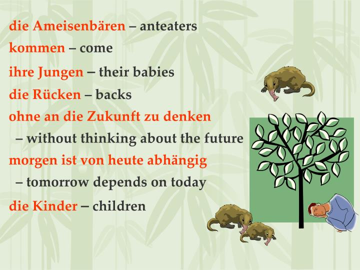die Ameisenbären