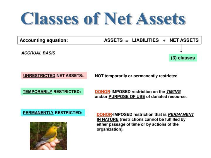 Classes of Net Assets