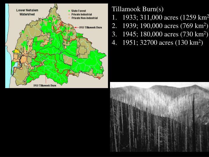 Tillamook Burn(s)