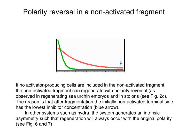 Polarity reversal in a non-activated fragment