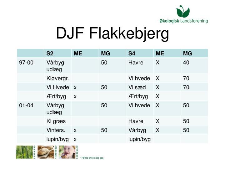 DJF Flakkebjerg