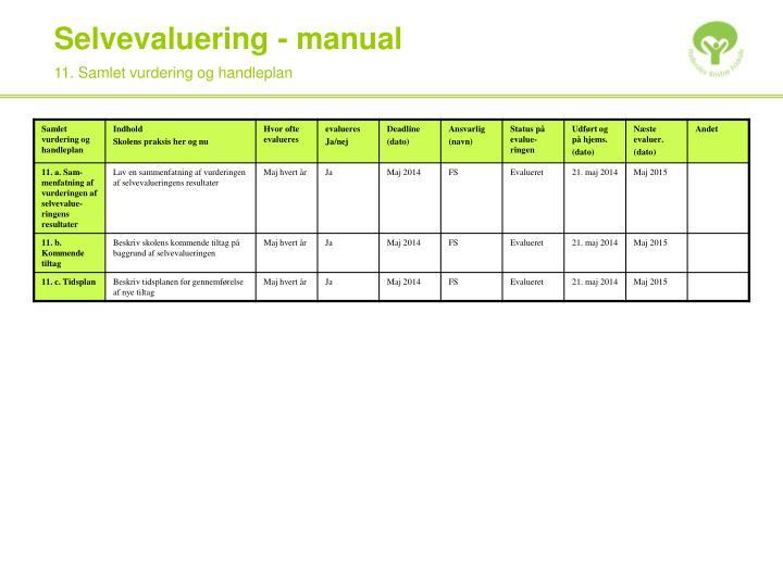 11. Samlet vurdering og handleplan