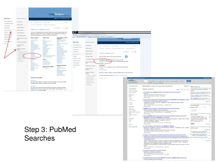 Step 3: PubMed Searches