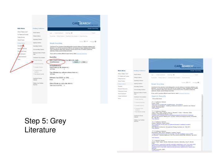 Step 5: Grey Literature